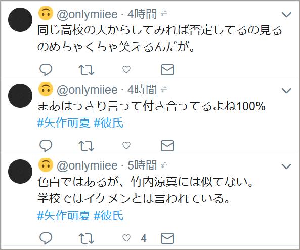 矢作萌夏 文集