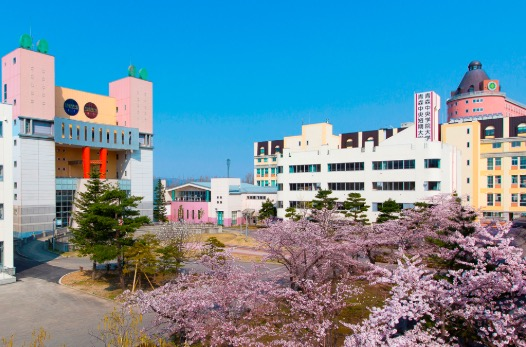 王林 大学